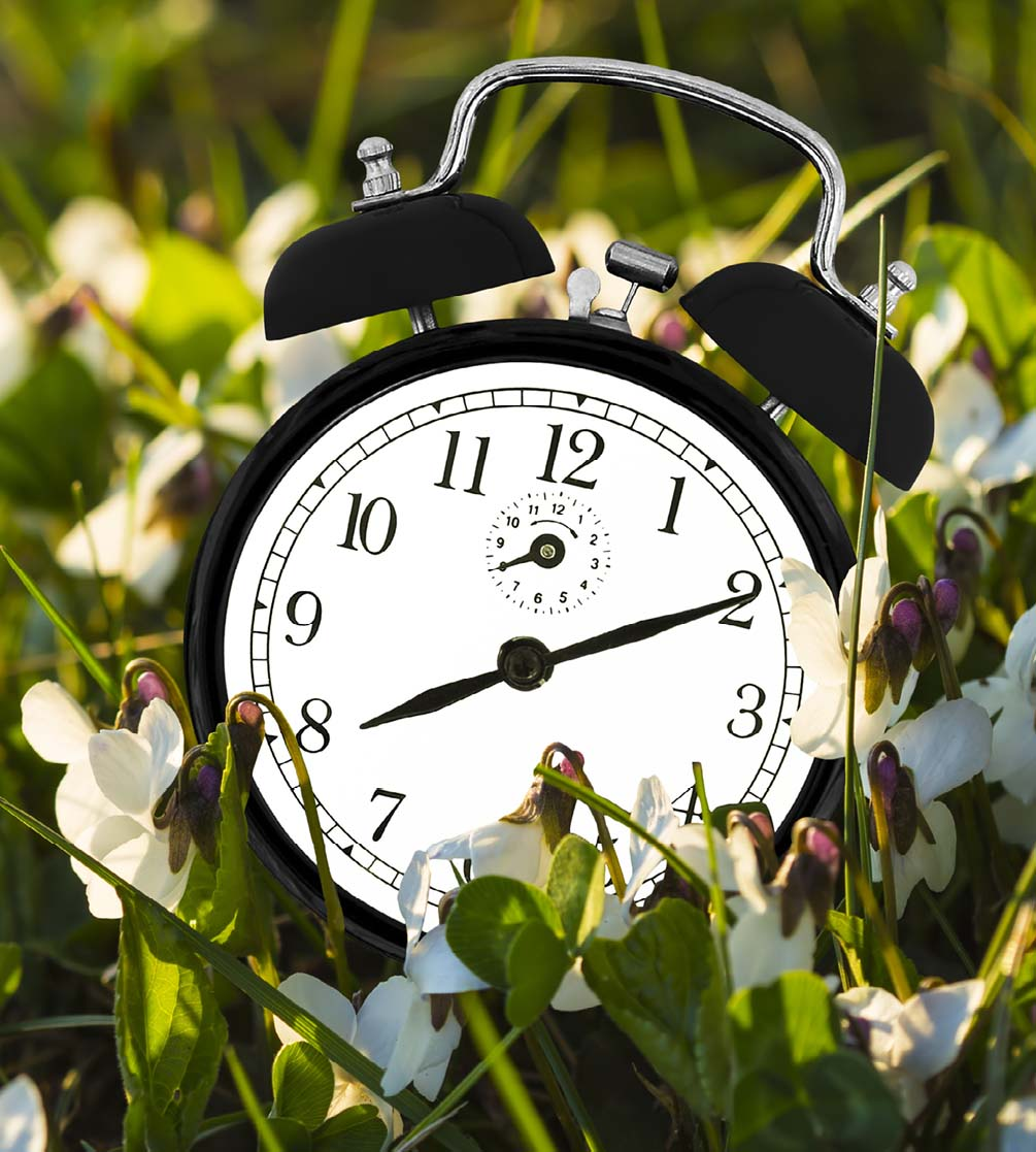 Drawbacks Of Daylight Savings For Seniors And Those With Serious Illness
